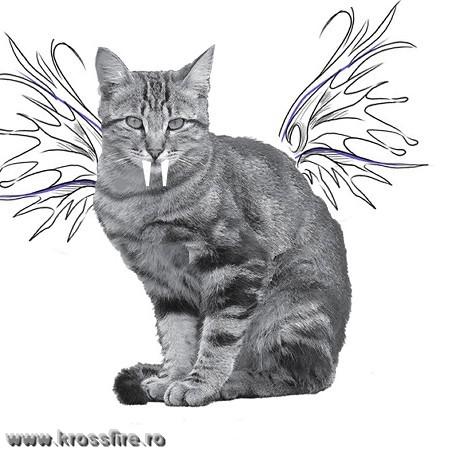 Cum am inventat pisica…